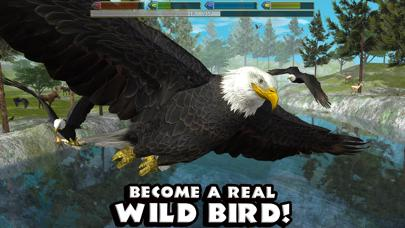 Ultimate Bird Simulator iOS