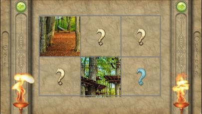 FlipPix Jigsaw screenshot 2