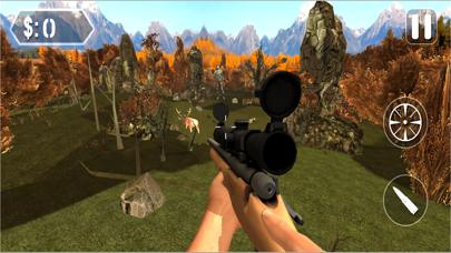 Forest Animal Hunting  Sniper Game
