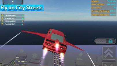 Flying Sports Car Driver iOS