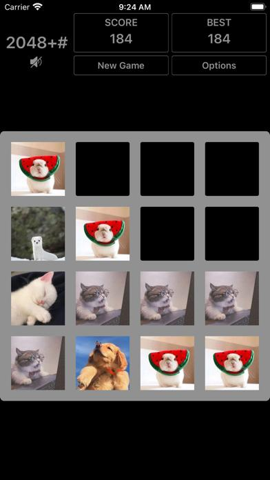 2048 plus# iPhone Screenshot