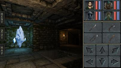 Legend of Grimrock iPhone Screenshot