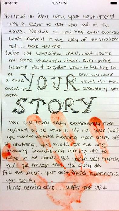Your Story iPhone Screenshot