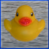 Duck Invader app icon