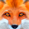 Ultimate Fox Simulator app icon