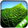 Game Pro - LittleBigPlanet 3 Version