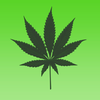 Hemp Blocks iOS Icon