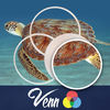 Venn Turtles: Overlapping Jigsaw Puzzles iOS Icon