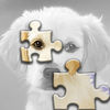 Cute Dogs Jigsaw Puzzle Set app icon