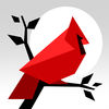 Cardinal Land iOS Icon