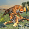 Clan of Tigers app icon