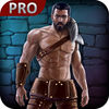 Blood Heroes Pro app icon