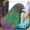 Pigeon Simulator iOS Icon