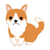 Lost Puppy app icon