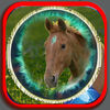 The Lucky Horse app icon