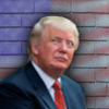 Great Wall of Trump iOS Icon