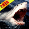 2016 Great White Shark Attack iOS Icon