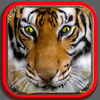 Funny Animals Puzzle for Kids app icon