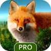 Wild Forest Hunt Pro iOS Icon