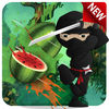 Real Ninja Fruit Cut 2016 app icon