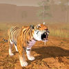 Hungry Tiger 3D app icon