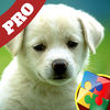 10*16 Jigsaw Puzzles For Kids (Pro) app icon