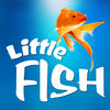 Little Fish Game app icon