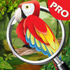 Unexplored Island app icon