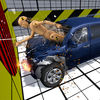 Car Crash Test Simulator app icon