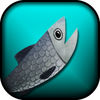 Super Salmon Migration app icon