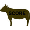 Score Calculator for Agricola iOS Icon