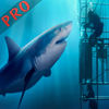 Angry Shark Extreme Rampage Pro iOS Icon