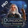 Dungeon Realm Invasion Pro iOS Icon