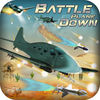 Battle Plane Down Pro app icon