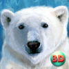 Wild White Polar Bear Simulator Full App Icon