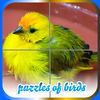 Puzzles of Birds iOS Icon