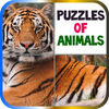 Puzzles of Animals app icon