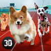 Dog Racing Tournament Sim 3D Full iOS icon