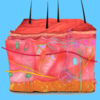Integumentary System Quiz icon