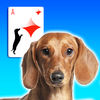Doxie Solitaire icon