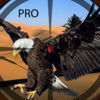 A Eagle Shooting Pro