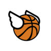 Flappy Dunk icon