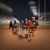 Greyhound Racing ® App