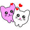 Love Rolling Cats iOS icon