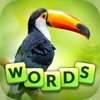 Words and Animals iOS icon