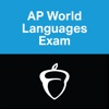AP World Languages Exam App App