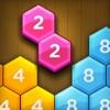 Hexa Number Puzzle