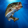 I Fishing App Icon