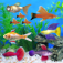Fish Tycoon App Icon