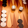 Backgammon Touch app icon
